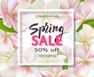 Предпосылка продажи весны с цветками Дизайн знамени скидки сезона с вишневыми цветами и лепестками Стоковая Фотография