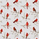 Предпосылка птиц зимы ретро Стоковое Изображение