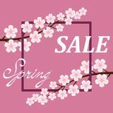 Предпосылка плаката продажи весны Стоковые Изображения
