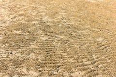 Предпосылка пляжа песка Стоковые Фотографии RF