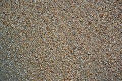 Предпосылка пляжа sand Стоковое Изображение RF