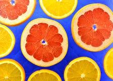 Предпосылка различных цитрусовых фруктов видов Стоковая Фотография RF