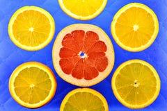 Предпосылка различных цитрусовых фруктов видов Стоковые Фотографии RF