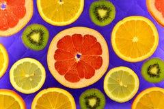 Предпосылка различных цитрусовых фруктов и кивиов видов Стоковое Фото