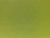 Предпосылка растительности Стоковая Фотография RF