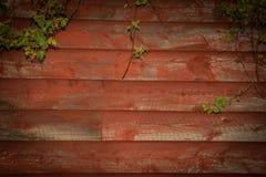 Предпосылка древесины амбара Стоковая Фотография