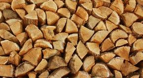 Предпосылка древесин Стоковое Изображение RF
