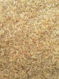 Предпосылка риса Brown Стоковое Изображение