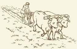 предпосылка рисуя флористический вектор травы Примитивное земледелие Поле обработанное крестьянином иллюстрация вектора