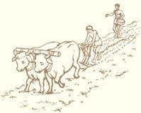 предпосылка рисуя флористический вектор травы Примитивное земледелие Поле обработанное крестьянами иллюстрация вектора
