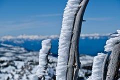 Предпосылка рождества или зимы Стоковая Фотография RF