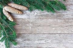 Предпосылка рождества с ветвями дерева и конусами сосны Отруби ели Стоковые Фото