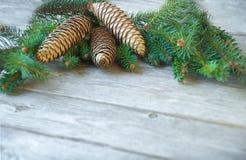 Предпосылка рождества с ветвями дерева и конусами сосны Отруби ели Стоковая Фотография RF