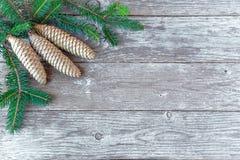 Предпосылка рождества с ветвями дерева и конусами сосны Отруби ели Стоковое фото RF