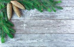 Предпосылка рождества с ветвями дерева и конусами сосны Отруби ели Стоковая Фотография
