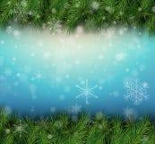 Предпосылка рождества с ветвями ели Стоковое Изображение