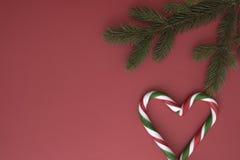 Предпосылка рождества с twings ели и тросточками конфеты на красном цвете Взгляд сверху, плоское положение Скопируйте космос для  Стоковые Фотографии RF