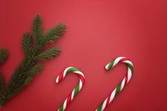 Предпосылка рождества с twings ели и тросточками конфеты на красном цвете Взгляд сверху, плоское положение Скопируйте космос для  Стоковая Фотография