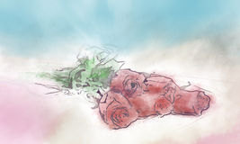 Предпосылка, розы Стоковое Изображение