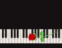 Предпосылка рояля с иллюстрацией красной розы Стоковые Изображения RF
