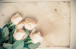 Предпосылка свадьбы винтажная романтичная Стоковые Фотографии RF