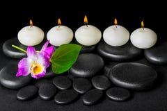 Предпосылка свечей строки белых, dendrobium курорта цветка орхидеи Стоковое Фото