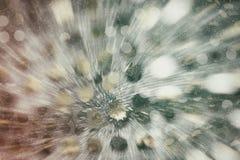 Предпосылка серебряных sequins абстрактная Стоковая Фотография RF