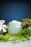 Предпосылка сини взгляда Cream водорослей опарника вертикальная Стоковое Изображение