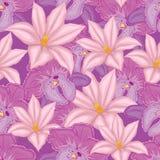 предпосылка сирени безшовная с орхидеями розовых и сирени Стоковые Изображения