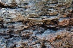 Предпосылка скалы моря стоковые изображения