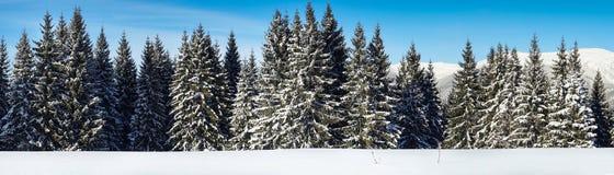 Предпосылка снежного ландшафта природы зимы внешняя Стоковое Изображение RF