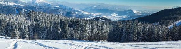 Предпосылка снежного ландшафта природы зимы внешняя Стоковая Фотография