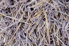 Предпосылка соломы риса Стоковые Фото