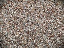 Предпосылка стены камешка Стоковая Фотография RF