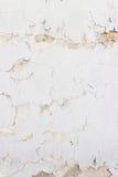 Предпосылка стены штукатурки Стоковое Изображение