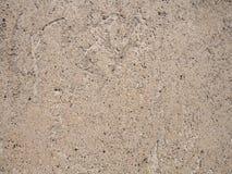 Предпосылка стены monochrom гипсолита Стоковая Фотография RF
