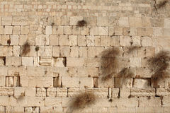 Предпосылка стены Weatern Стоковые Изображения