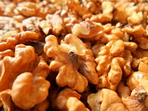 Предпосылка стерженя грецких орехов Стоковое фото RF