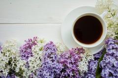 Предпосылка с ветвями сирени и чашки черного кофе Стоковое Изображение