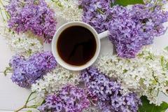 Предпосылка с ветвями сирени и чашки черного кофе Стоковые Фото