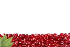 Предпосылка сделанная из красных семян гранатового дерева Стоковое Фото