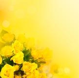 Предпосылка с желтыми розами Стоковое Изображение RF