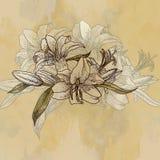 Предпосылка с лилиями в винтажном стиле Стоковые Фото