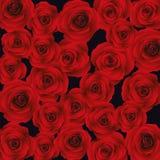 Предпосылка с красными розами, вектор Стоковые Изображения