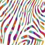 Предпосылка с красочной картиной кожи зебры Иллюстрация вектора