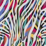 Предпосылка с красочной картиной кожи зебры Бесплатная Иллюстрация