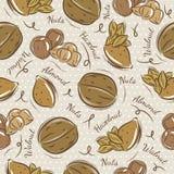 Предпосылка с миндалиной, фундуком и, грецкий орех Стоковое Изображение