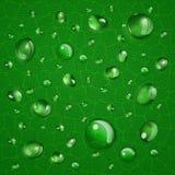 Предпосылка с падениями на зеленых лист Стоковая Фотография RF