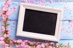 Предпосылка с пинком Сакуры цветет и пустое классн классный Стоковая Фотография