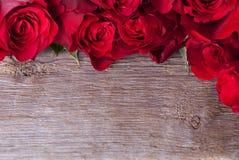 Предпосылка с розами Стоковые Изображения RF